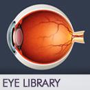 eye-library-icon-2015